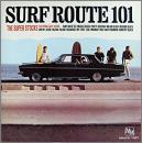サーフ・ルート 101