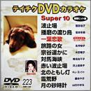 テイチクDVDカラオケ スーパー10 (223)