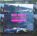 IN THE ABSENCE OF PINK Knebworth 85