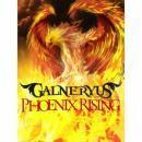 PHOENIX RISING(初回限定盤)(DVD付)